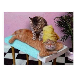 おもしろいな猫のマッサージ ポストカード
