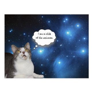 おもしろいな猫の星の取締官 ポストカード