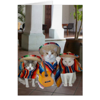 おもしろいな猫Cinco deメーヨー カード