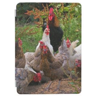 おもしろいな農場構内の鶏及びオンドリのiPadの頭が切れるなカバー iPad Air カバー