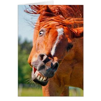 おもしろいな馬の笑う写真 カード