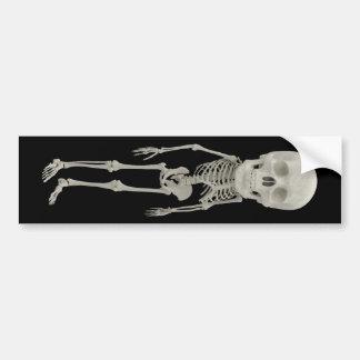 おもしろいな骨組に見ること バンパーステッカー