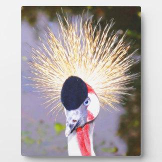 おもしろいな鳥の長い毛 フォトプラーク