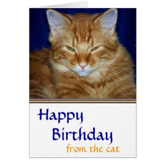 おもしろいなCrabby虎猫猫のバースデー・カード- カード