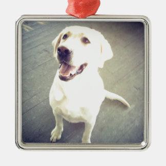 おもしろいのChevyと示される愛情のある黄色いラブラドル・レトリーバー犬 メタルオーナメント