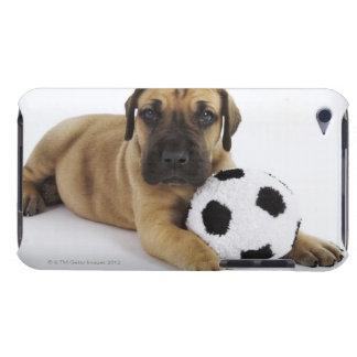おもちゃのサッカーボールを持つグレートデーンの子犬 Case-Mate iPod TOUCH ケース