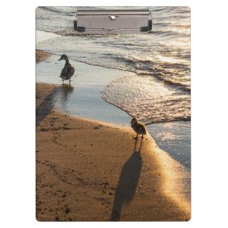 お母さんが付いている日没の歩行 クリップボード