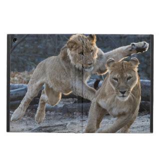 お母さんが付いている若いライオンの演劇 iPad AIRケース