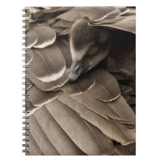 お母さんの翼の下の小さいゴスリング ノートブック