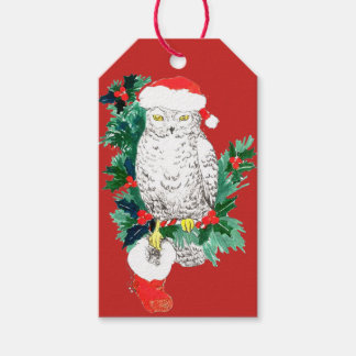 お洒落なクリスマスのフクロウのストッキングおよびサンタの帽子 ギフトタグ