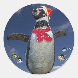 お祝いのペンギンのステッカー ラウンドシール