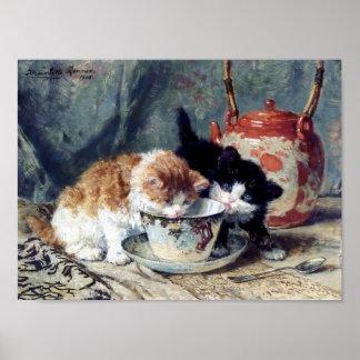 お茶会を持っている子ネコ ポスター