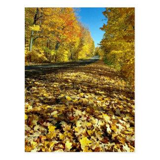 かえでの葉および幸運のパークウェイ、Gatineau公園、Q ポストカード
