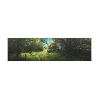 かすんでいる森林歩行 キャンバスプリント