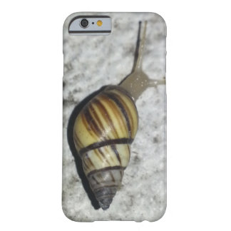 かたつむりの自然の電話箱 BARELY THERE iPhone 6 ケース