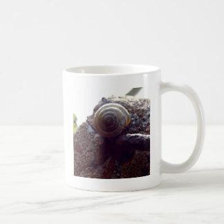 かたつむり コーヒーマグカップ