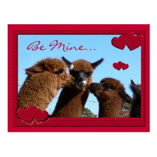 かわいいアルパカのバレンタインデーの郵便はがき ポストカード