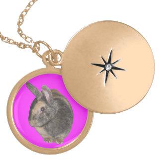 かわいいウサギの写真のネックレス ロケットネックレス