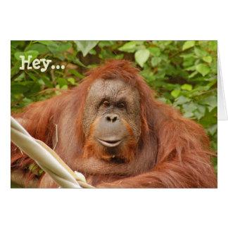 かわいいオランウータンの誕生日の挨拶状 カード