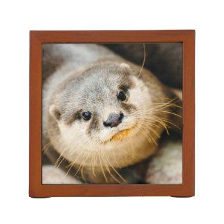 かわいいカワウソ、動物のポートレート、自然の写真撮影 ペンスタンド