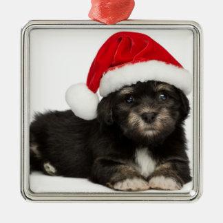 かわいいクリスマスのHavaneseの小犬 メタルオーナメント