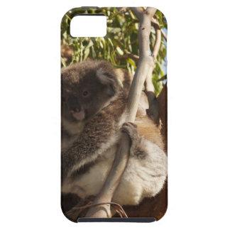 かわいいコアラのAussiの奥地にサファリの自然の芸術 iPhone SE/5/5s ケース