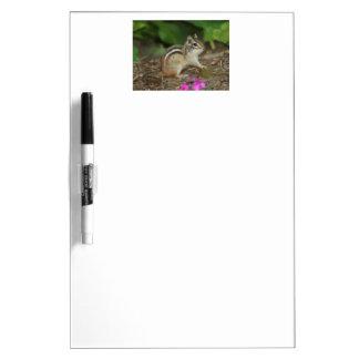 かわいいシマリスの写真が付いているプロダクト ホワイトボード