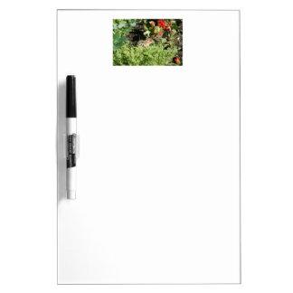 かわいいシマリスの写真を持つ消去板を乾燥して下さい ホワイトボード