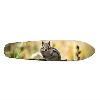 かわいいシマリス 21.6CM スケートボードデッキ