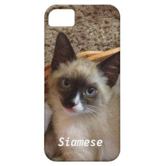 かわいいシャム猫 iPhone SE/5/5s ケース