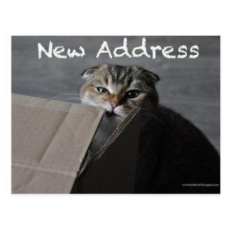 かわいいスコットランド人の折目カード猫のおもしろいな移動住所 ポストカード