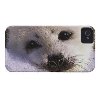 かわいいタテゴトアザラシのファンタジーの芸術の野性生物サポータ Case-Mate iPhone 4 ケース