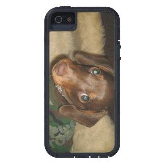 かわいいダックスフントのプルートの堅い電話箱 iPhone SE/5/5s ケース