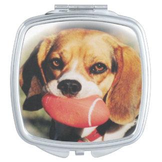 かわいいビーグル犬及びフットボールのおもちゃ
