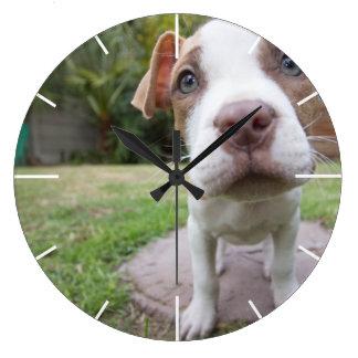 かわいいピット・ブル犬は近く機嫌を取ります ラージ壁時計