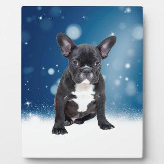 かわいいフレンチ・ブルドッグの雪は青いクリスマスを主演します フォトプラーク