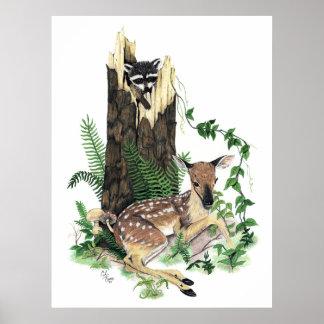 かわいいベビーのオジロ鹿シカの子鹿およびアライグマのプリント ポスター