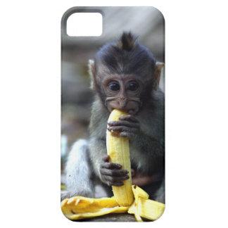 かわいいベビーのマカク属猿の食べ物のバナナ iPhone SE/5/5s ケース