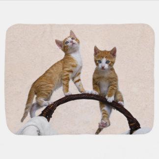 かわいいベビーの子ネコのおもしろいな演劇の体育館の写真の猫好き- ベビー ブランケット