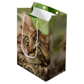 かわいいメインのあらいぐまの子ネコ ミディアムペーパーバッグ