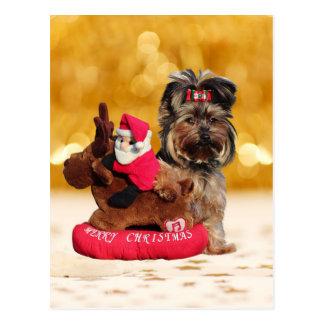 かわいいヨークシャテリアのメリークリスマス ポストカード