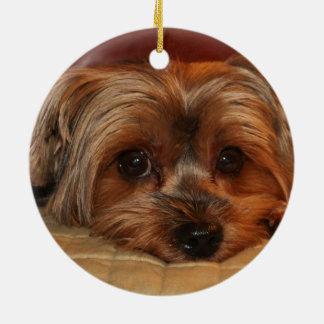 かわいいヨークシャテリア犬 セラミックオーナメント