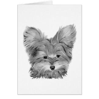 かわいいヨークシャーテリア犬 カード