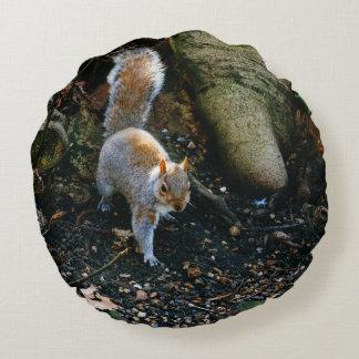 かわいいリスの写真、森林の動物 ラウンドクッション