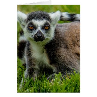 かわいいリングや輪の尾lemurのデザインプロダクト カード