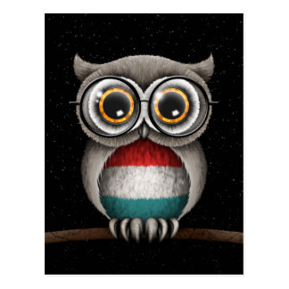 かわいいルクセンブルクはフクロウの身に着けているガラスに印を付けます ポストカード