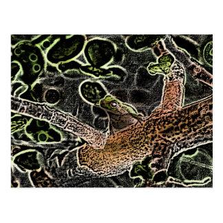 かわいい動物を絵を描いている木の逆のアマガエル ポストカード