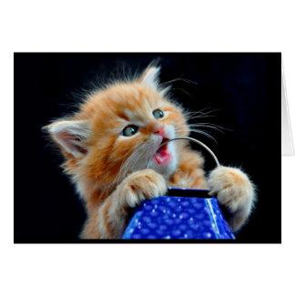 かわいい子ネコのかみ砕くこと カード