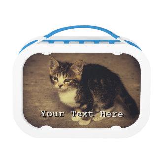 かわいい子ネコの写真、ベビー動物 ランチボックス