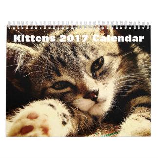 かわいい子ネコ2017年 カレンダー